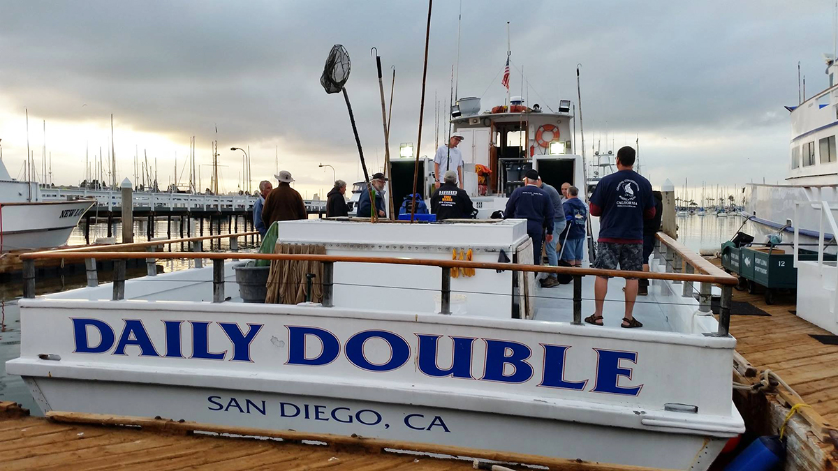 Cca members daily double trip to catch halibut broodstock for Point loma sport fishing