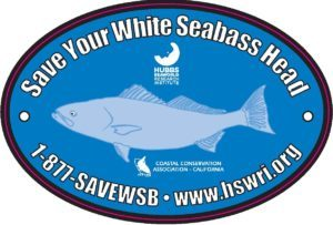 Save-Your-White-Seabass-Heads-Sticker-2017-New-Logo-300x203